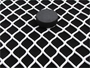 hockey goal replacement netting